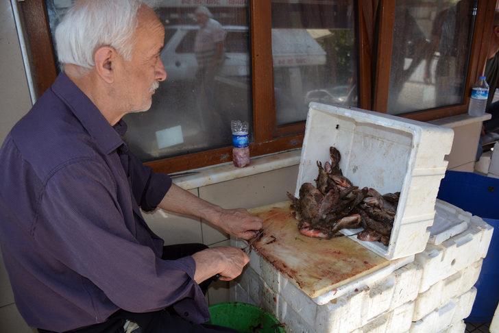 İskorpit balığı 45 liraya satılıyor