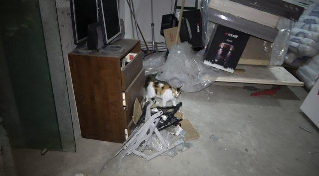 İtfaiye ekiplerinin kedi ve yavrularıyla imtihanı