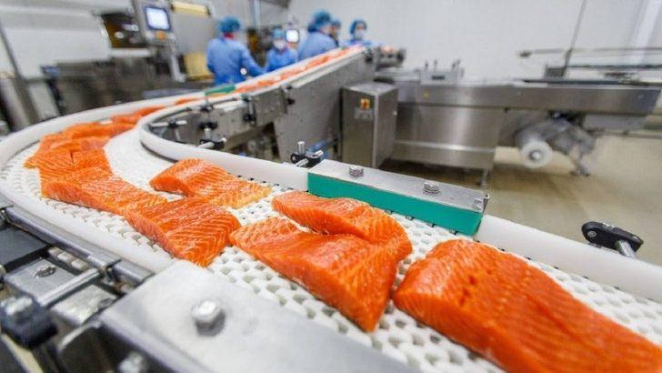 Gıda makinesi üretene devlet desteği olmalı