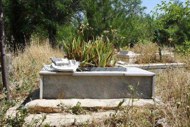 Şanılurfa'da mezar taşlarını kıran şüpheli aranıyor