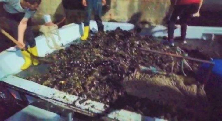 Tekirdağ'da bir tekne dolusu kaçak midye ele geçirildi