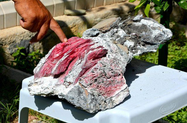Bu kez 'fosil' buldu
