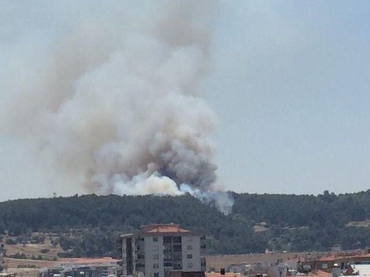 İzmir'in Buca ilçesinde ormanlık alanda yangın çıktı. Rüzgarın da etkisiyle büyüyen yangına 5 helikopter ve 12 arazöz ile müdahale ediliyor. Yangın bölgesine Balıkesir ve Muğla'dan da helikopterlerin sevk edildiği öğrenildi.