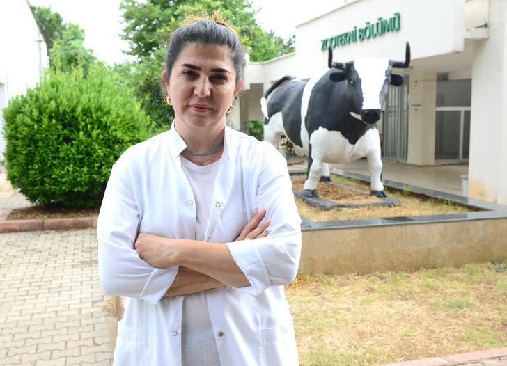 Prof. Dr. Koluman: Süt ürünlerinin zararı yok