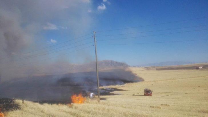 Malatya'da anız ve ot yangını