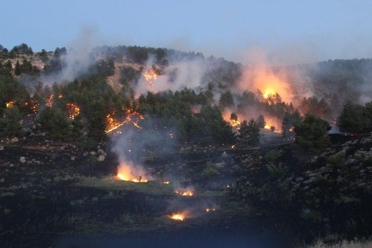 Orman yangını güçlükle kontrol altına alındı