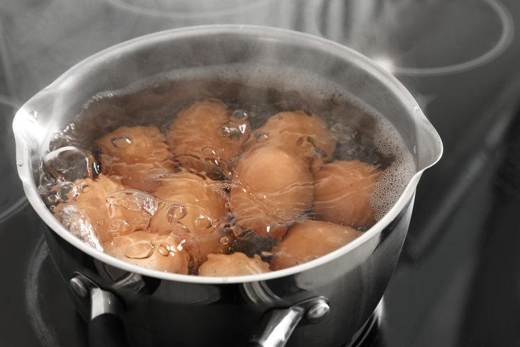 Efsane değil gerçek! Haşladığınız yumurtanın suyunu bitkilerinize dökün