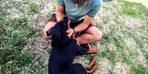 Malkaralı vatandaş kaybolan köpeğine kavuştu