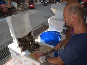 İskorpit balığı tezgahların vazgeçilmezi haline geldi