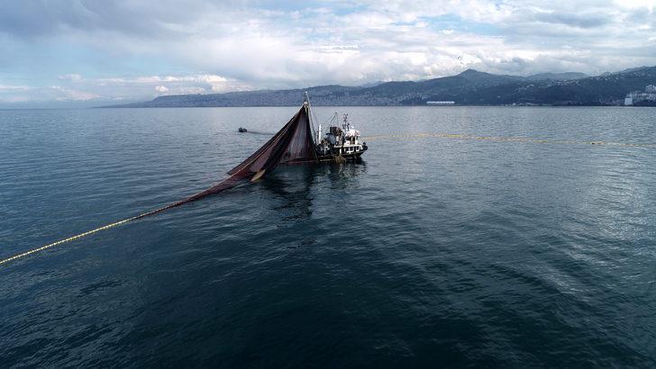 Uzmanlar uyardı: Marmara ve Karadeniz'deki dip balıkları çocuklara yedirmeyin