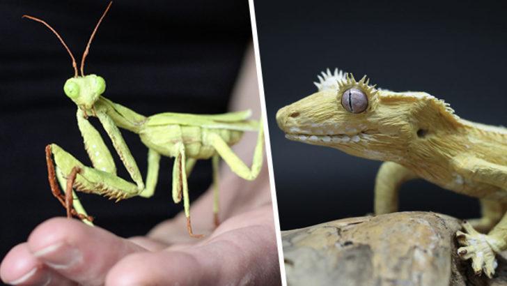 Bu böcekleri gören gerçek sanıyor ama gerçek çok başka!