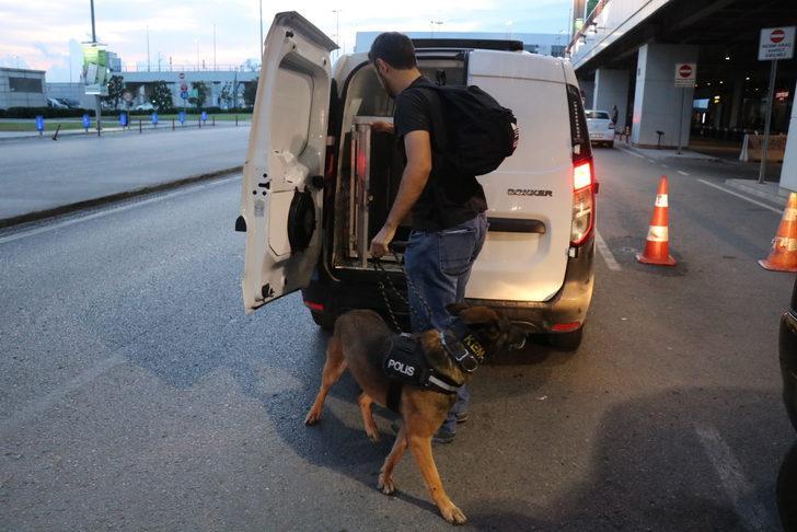 Narkotik köpekleri şark görevlerini yerine getirmek için yola çıktı
