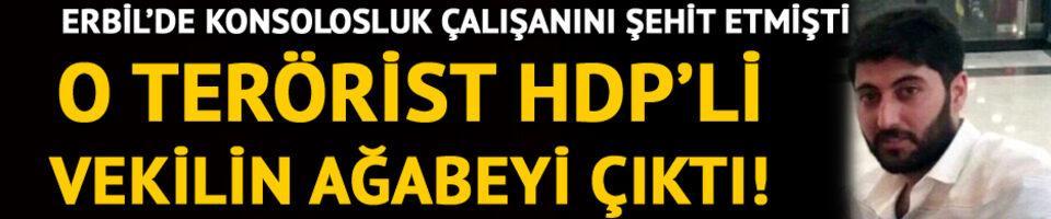 O terörist HDP'li vekilin ağabeyi çıktı!