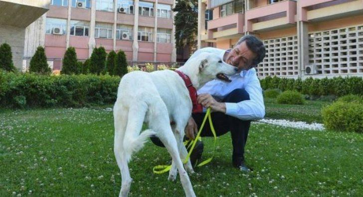 Milli Eğitim Bakanı Ziya Selçuk paylaştı! Okullarda yeni dönem