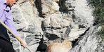 Kayalıklarda sıkışan köpek kurtarıldı