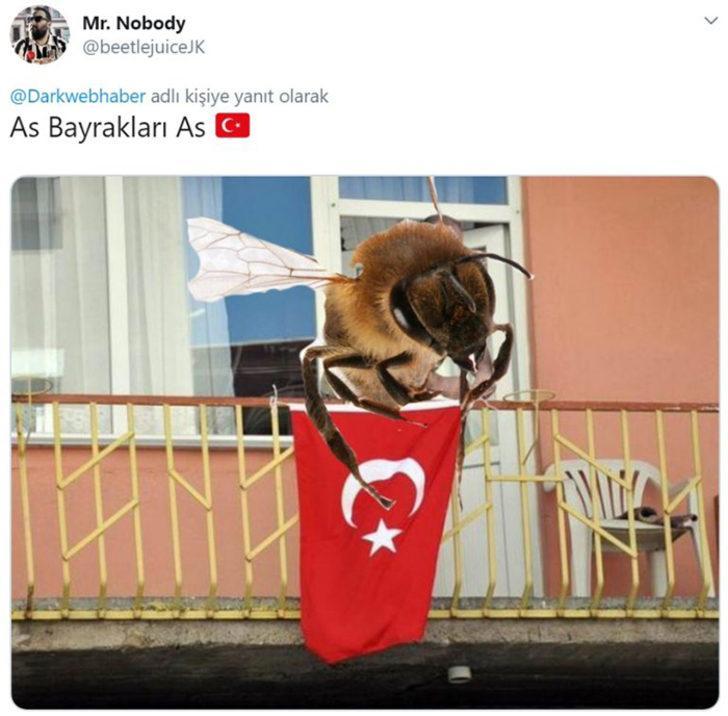İngiltere'de idama mahkum edilen Türk arı Twitter'da olay oldu!