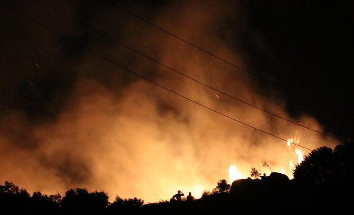 Marmara Adası'ndaki yangının bilançosu belli oldu! Tam 80 hektar alan kül oldu