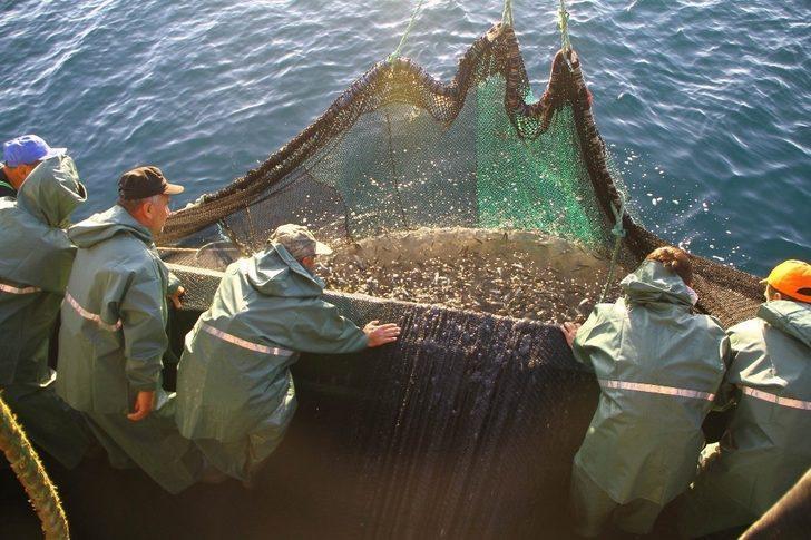 Samsun deniz avcılığının merkezi oldu