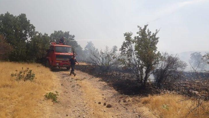 Adıyaman'da ormanlık alanda yangın!