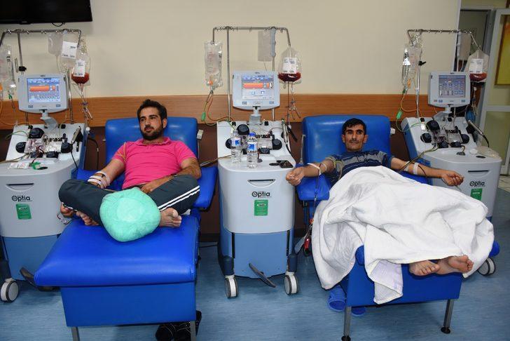 Malatya'da 7 hastaya aynı anda kök hücre nakli yapıldı