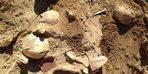 Urartular'ın ölüm nedenleri araştırılıyor