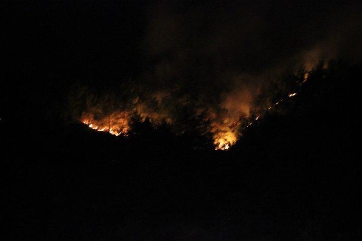 Korkulan oldu! Hatay'daki yangın farklı alanlara sıçrayarak yeniden alevlendi!