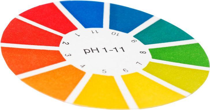 pH DENGESİNİ KORUR