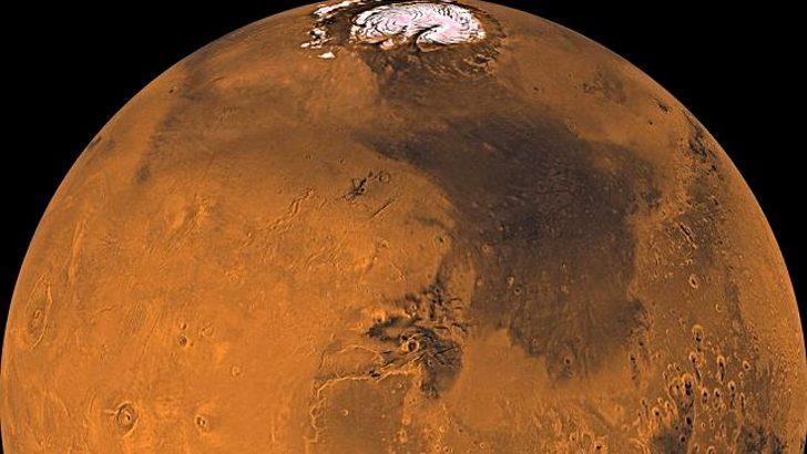 Elon Musk'ın Mars için yeni bir planı var!