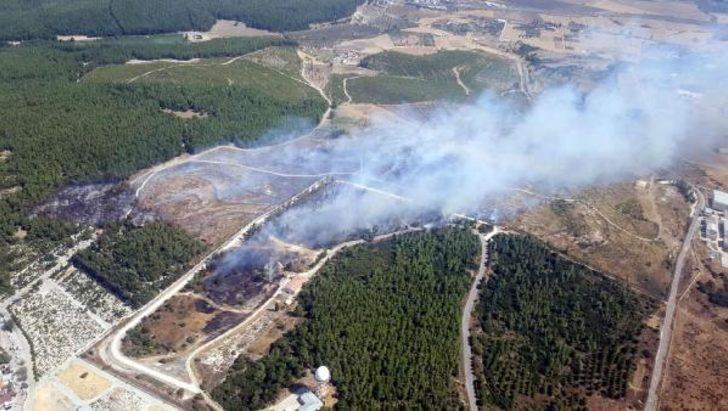 Son dakika! İzmir Gaziemir'de orman yangını