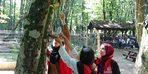 Gençler, kuşlar için ağaçlar yemlik astı