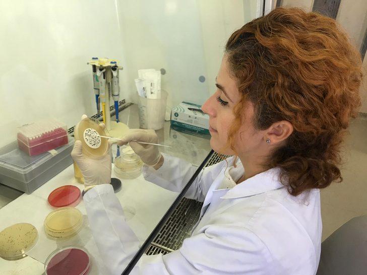 Ulusal Halk Sağlığı Referans Merkezi'nde, yıllık 8 bin numune inceleniyor