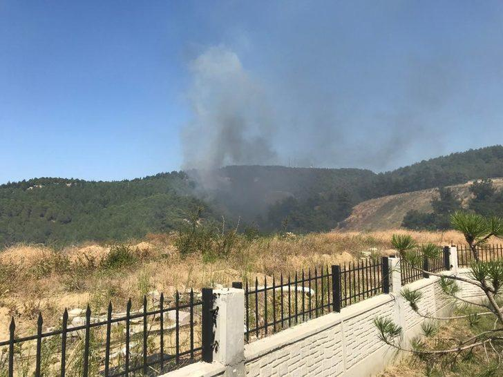 Çanakkale'de orman yangını (1)