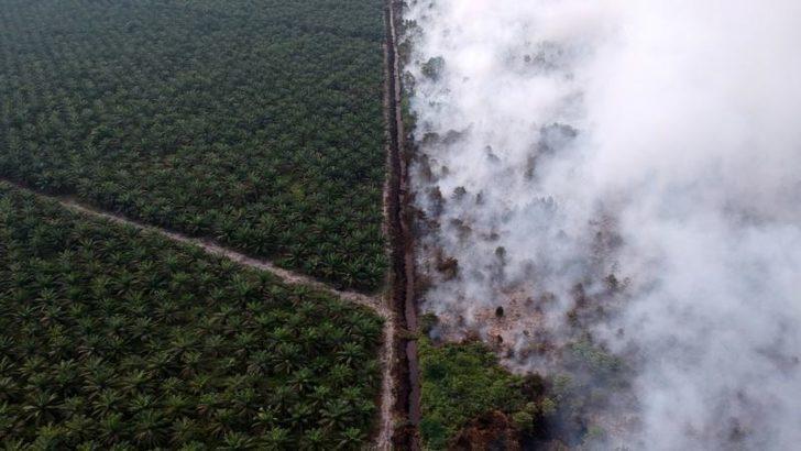 Endonezya'da Bir Aydır Süren Yangınlar İçin Yağmur Duası