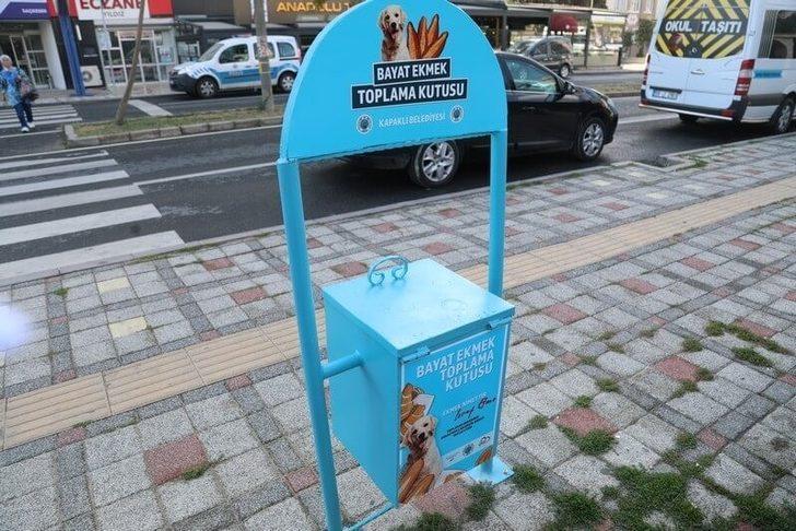Belediyeden sokak hayvanları için anlamlı proje