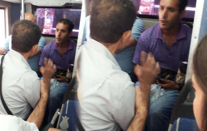 Bacaklarını bağladığı kediyi kemerine takıp, otobüse bindi