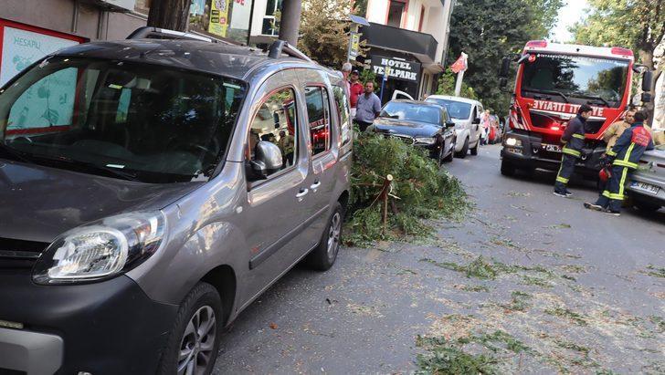 Fatih'te şiddetli rüzgar; ağaç dalları araçların üzerine düştü