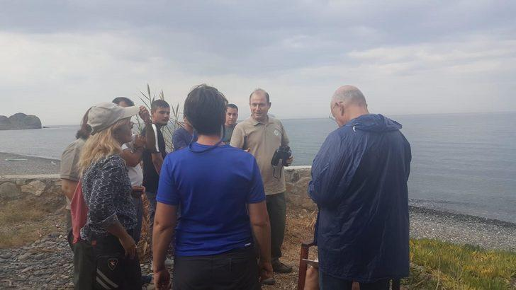 Kıyıya vuran yaralı Akdeniz fokunun tedavi edilmesini istediler (2)