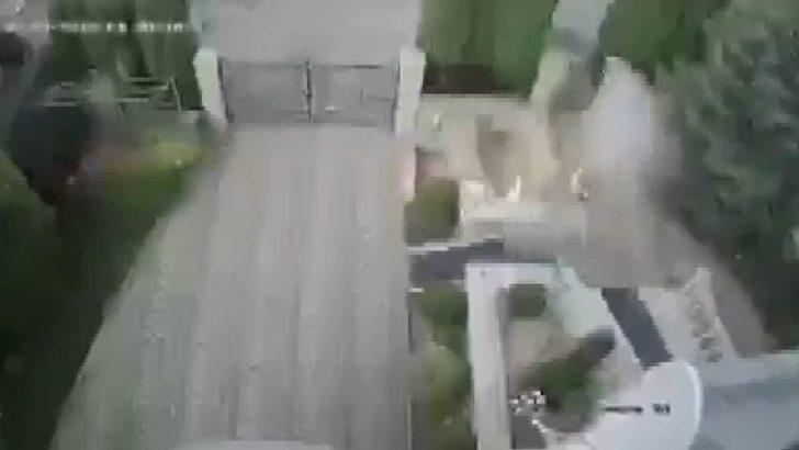 Bombalı paketi açan rektörün eli koptu