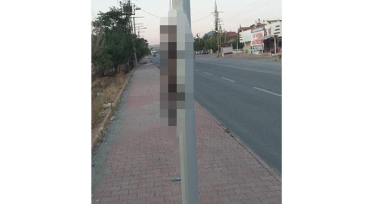 Konya'da vahşet! Gelinciği boynundan ve ayaklarından bağlayıp direğe astılar