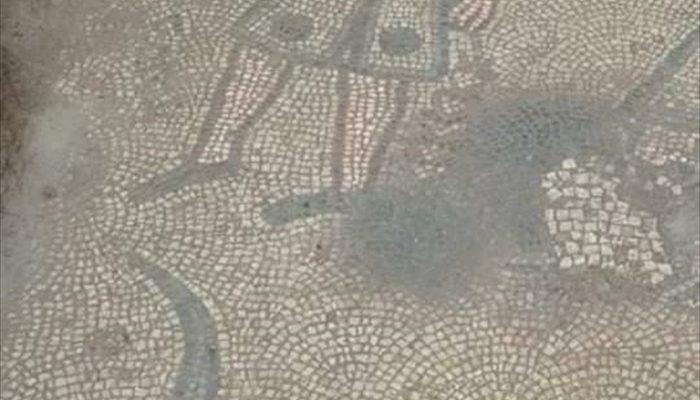 Tam bin 500 yıllık! Koruma altına alındı: Heyecanlandıran olay