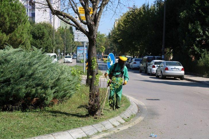 İzmit Yahya Kaptan'da yeşil alanlar tertemiz