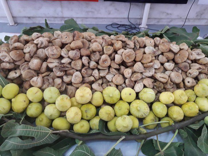 Çin'e kuru meyve ihracatında rekor artış