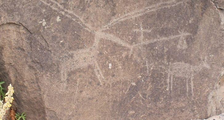 Bingöl'de Taş devrine ait, 12 bin yıllık kaya resimleri bulundu