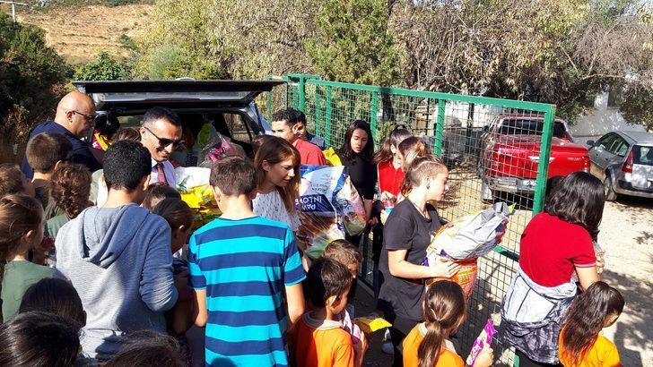 Datçalı öğrencilerden barınaktaki hayvanlara mama desteği
