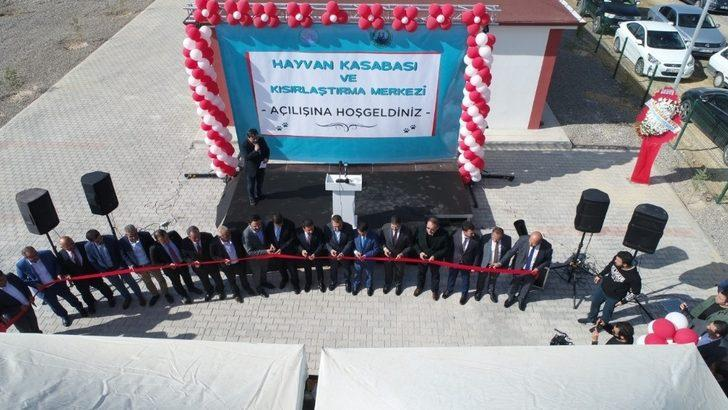 Nevşehir'de hayvan kasabası hizmete açıldı