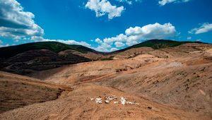 Alamos Gold'un Kaz Dağları'ndaki ruhsatı yenilenmedi, faaliyetler askıya alındı