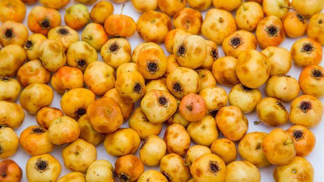Alıç nedir, alıç meyvesinin faydaları nelerdir, alıç sirkesi zayıflatır mı?