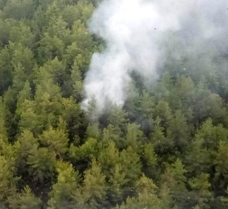 Manavgat'ta yıldırım düşen ormanda yangın