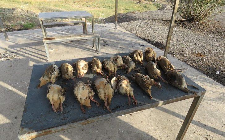 Tercan'da avlanma limitlerine uymayan 2 avcıya 9 bin 346 TL para cezası