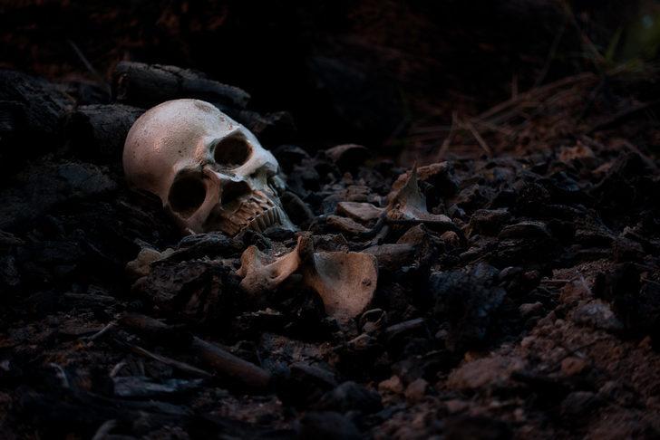 Meksika'da 13 ceset bulundu! Çölde çukur açıp...